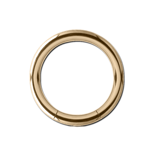 Segment Ring 14g 12mm 18ct
